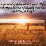 40 Prayers for Perilous Times: Day 35